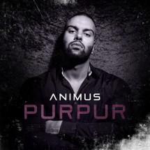 Animus - Purpur - VORABCOVER