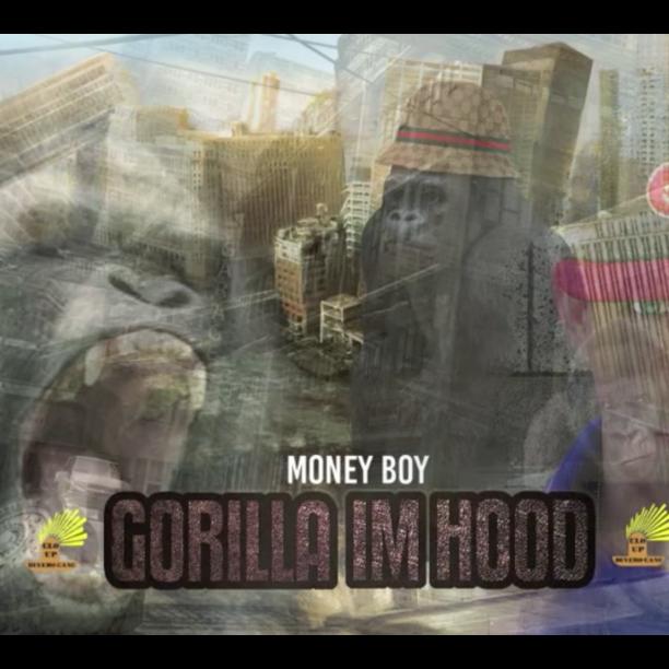Money Boy gorilla