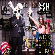 bass-sultan-hengzt-musik-wegen-weibaz-cover