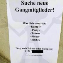 gang-gesucht