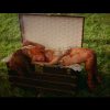 Rihanna – Bitch Better Have My Money (Video)